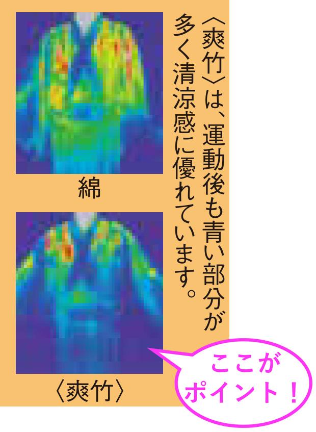 涼しさを証明するサーモグラフィー画像