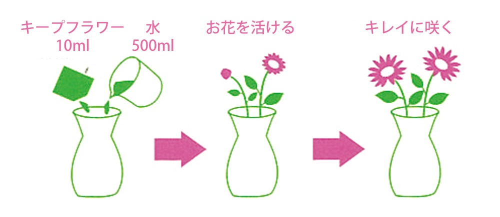 キープフラワー 【お花長持ち 業務用】説明図